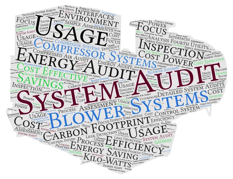 LSB Blower System Audit